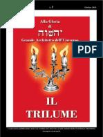 TRILUME - Ottobre 2015 (2)