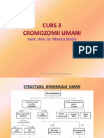 Cromozomii Umani