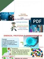 Quimica proteina carbohidratos aminoacidos