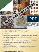 Genetic de Poblaciones - Slide