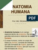 ANATOMIA HUMANA.pdf