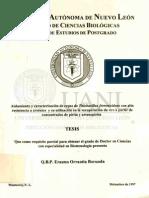 Aislamiento y caracterización de cepas de Thiobacillus ferrooxidans con alta resistencia a arsénico y su utilización en la recuperación de oro a partir de concentrados de pirita y arsenopirita