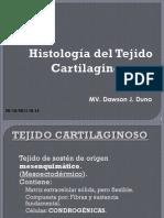 tejidocartilaginoso-111128090605-phpapp02