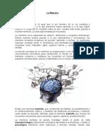 La Memoria - Psicologia