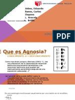 AGNOSIA- Sintomatologia . Faltan Varias Diapos Nose Como Es