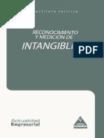 Cont 02 Reconocimiento Medicion Intangibles