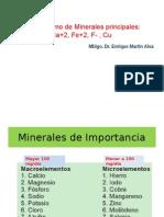 MINERALES -METABOLISMO