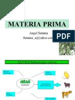 Materia Rpima Alfalfa y Maiz