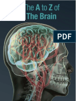 A to Z of the Brain Web Version