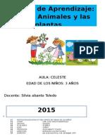 Animales y Plantas Silvia 01. Proyecto
