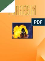 Flaresim.pdf