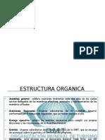 Estructura Orgánica Vero