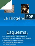 la_filogenesis (1).ppt