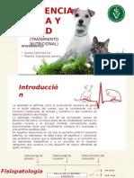 Insuficiencia Cardíaca Congestiva y su relación con la nutrición animal.
