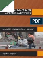 Población Indígena en Aspectos Ambientales