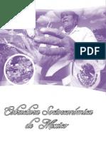 Estructura Socio Económica de México