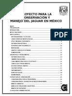 CONSERVACION DEl JAGUAR EN MEXICO