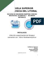 Patologia Reporte v1