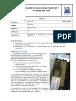 Análisis de crecimiento de la langosta utilizando un alimento artificial