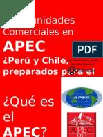 Presentacion APEC David Lemor - Proinversion
