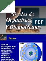 Niveles de organización y biomoléculas