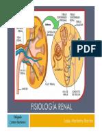 Fisiología Del Sistema Renal