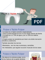 Pulpa (1).ppt
