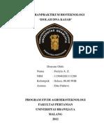 Laporan Isolasi DNA Kasar PDF