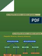 Procedimientos Asuntos Ambientales Ppm Pma