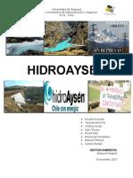 HidroAysén.docx
