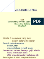metabolisme-lipida-blog.ppt