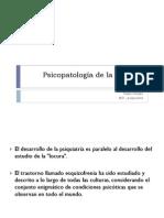 Psicopatologia de la psicosis.pdf
