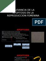 RELEVANCIA DE LA APOPTOSIS EN LA REPRODUCCION FEMENINA.pptx