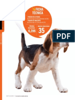 Estudio de Croquetas de perro (por la PROFECO)