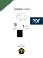 Gel Elektroforesis Fat
