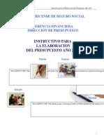 Instructivo Formulacion Presupuestaria 2010