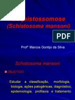 aula8-schistosomamansoni2007ok-090622183312-phpapp02.ppt