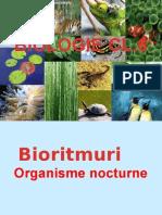 Organisme Nocturne.prezentare.