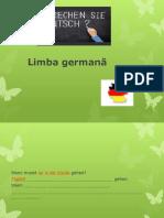 Prezentare Limba Germana