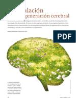 Texto Estimulación de Regeneración Cerebral (1)