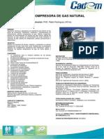 Planta Compresora Del Gas Natural (6)