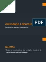 Actividade Laboratorial