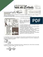 Guia de Estudos II 1st EM - CSFP