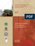 1919-Jarabe_Yacon.pdf