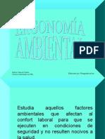 ergonomiaambiental-110728180752-phpapp01
