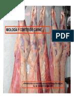 Miología-Cortes de Carne