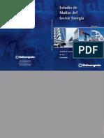 Libro Estudio de Multas Sector Energia Vol1