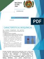 2.3.2 Características Bioquímicas
