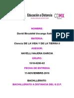 1510-0200-02-Leyes de Mendel-david b. Uscanga Saldivar