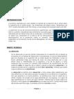 Informe N°8